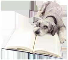 Dog Resources